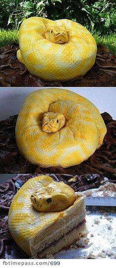 Amazing Snake Cake