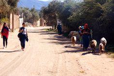 donne. #Marocco