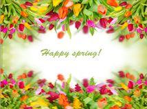 Happy spring tulips
