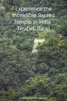 The Tirupati temple was built for Vishnu worshippers and is dedicated to his seventh incarnation, Venkateshwara. It is crowded throughout the year due to the many pilgrims that visit it as a pilgrimage. It has been regarded to be the richest temple in the world. Tirupati is a temple city and one of the most sacred in the entire nation, as such there are certain things one must know before visiting the temple. #india #Tirupati #SacredTempleinIndi #travel Waiting In Queue, Do The Needful, Temple City, Deer Park, Pilgrims, Things To Know, Beautiful Places, Temple India, Around The Worlds