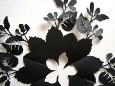 black paper cut