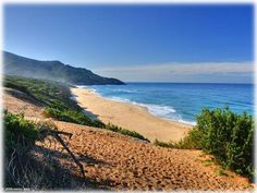 La spiaggia di Scivu. Ingrandisci l'immagine e accedi alla galleria delle foto.