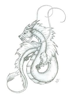 Image result for peaceful japanese dragon drawing