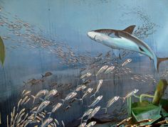 60 Marvellous Wall Paintings And 3-D Street Art - noupe