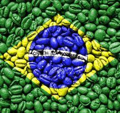 Mundial de Fútbol 2014. Brasil