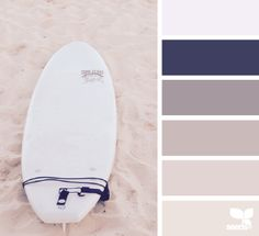 beach tones: shades of neutral cool brown and gray, eggplant