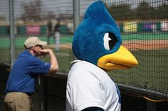 Creighton...intimidating bluebird?
