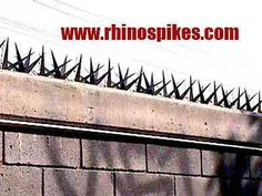 Rhino Spikes Picos para Bardas Cadillos Seguridad Chiapas, Acacoyagua en Acacoyagua, vista previa Patio Fence, Concrete Fence, Fence Gate, House Fence Design, Window Grill Design, Home Security Tips, Security Door, Brick Columns, Barn Pictures