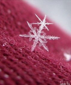 Snowflakes are an Endless Repetition of an Ordinary Miracle.