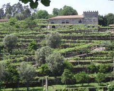 Booking.com: Alojamento Local Quinta De Pais - Turismo Rural , Caldelas, Portugal  - 94 Comentários de Clientes . Reserve agora o seu hotel!