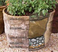 como plantar em vaso - Pesquisa Google