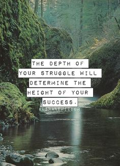 'The depth of your struggle will determine the height of your success'    best quote