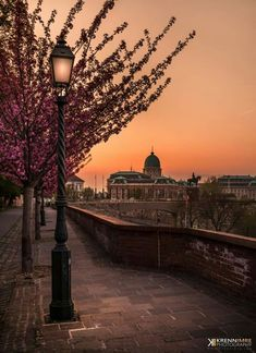 Krénn Imre: Hajnal a várnegyedben Life of Budapest Hungary Travel Honeymoon Backpack Backpacking Vacation Places Around The World, Around The Worlds, Cool Places To Visit, Places To Go, Capital Of Hungary, Budapest Travel, Buda Castle, Hungary Travel, Most Beautiful Cities