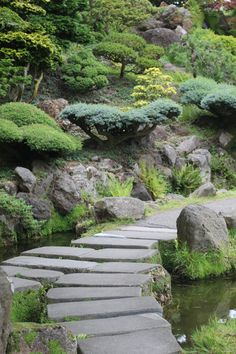 Got my zen on this week at the SF Japanese Tea Garden.  Get inspired by serenity on the blog post here...