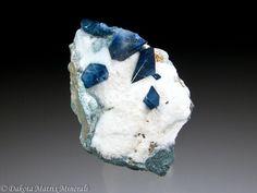 Benitoite crystals embedded in white Natrolite and matrix. - Dallas Gem mine, San Benito Co., California,