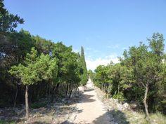 Botanical Garden, Otok Lokrum, Dubrovnik Croatia