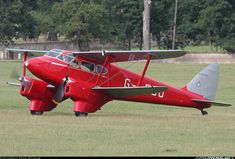 De Havilland DH-90A Dragonfly aircraft picture