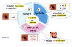 Adjectifs : attribut, apposé ou épihète par Fantadys
