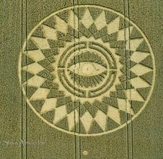 New Crop Circle formation reported August 16, 2014. Wheat Formation in UK Midlands. Nettle Hill, Ansty, Warwickshire, near Coventy, The Midlands of England.  Aerial image © 2014 by Steve Alexander. http://www.temporarytemples.co.uk/  Detail aerial image © 2014 by Cropcircleconnector. http://www.cropcircleconnector.com/2014/nettle/nettle2014a.html  Earthfiles – Linda Moulton Howe