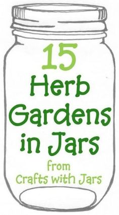 The best collection of great herb gardens in jars.  Come see how to plant and grow herbs in mason jars or any jar with these 15 great links. by Seradwen