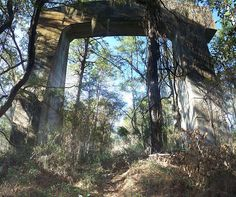 Bridge support for the never completed Cross Florida Barge Canal Marion County Florida, Old Florida, Life Is Beautiful, Beautiful Places, Orlando Strong, History Projects, The Old Days, Gulf Of Mexico, Thats The Way