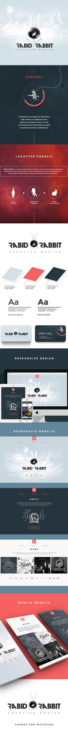 Rabid Rabbit - Brand - Responsive design on Behance