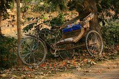 Riksja, Rest, Bangladesh, Vervoer