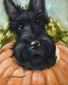 West Scottish Terrier scottie dog pumpkin halloween Thanksgiving seasonal art