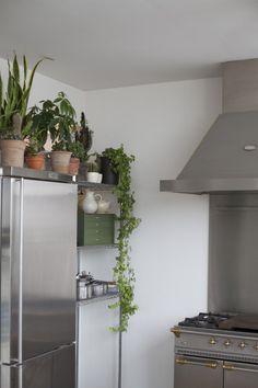 Freunde von Freunden — Bruno Pieters — Fashion Designer, Penthouse, Antwerp. Interior Plants, Kitchen Interior, Kitchen Design, Green Kitchen, Kitchen Plants, Kitchen Dinning, Dining, Humble Abode, Kitchen Styling
