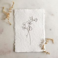 Ink artisan: Paper: ・・・ Dainty sweet pea print 🌿 available in my webshop! Ink Illustrations, Illustration Sketches, Plant Illustration, Watercolor Illustration, Sweet Pea Tattoo, Calligraphy Drawing, Simplistic Tattoos, Watercolour Tutorials, Art Sketchbook