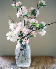 Like a painting 🌸🎨 #contax645
