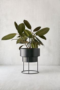 Metal Raised Planter