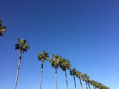 The ultimate guide to visiting Los Angeles with kids. From parks to ice cream parlours, to the best shops and playgrounds we have got it covered. La With Kids, Los Angeles With Kids, Visit Los Angeles, Ice Cream Parlor, Playgrounds, Parks, Shops, Adventure, Tents