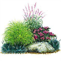 Gräser mit Buschrose