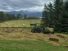 Akaki is baling hay in Alaska Cautlin Burton fb