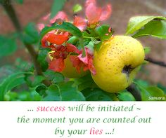 ... #success will be initiated ~ the moment you are counted out by your #lies ...!