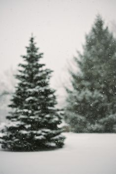 it's been a while since we had this much snow this early in the winter. Iphone Background Wallpaper, Of Wallpaper, Phone Backgrounds, Christmas Phone Wallpaper, Holiday Wallpaper, Christmas Feeling, Cozy Christmas, Green Christmas, Christmas Trees