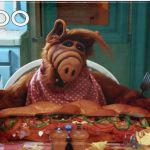 1989 Alf Puzzle.......  I love Alf !!!