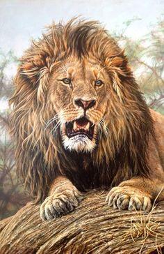 Original Paintings of Lions by Alan M Hunt