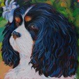 sweet little Poppy the King Charles Spaniel, my latest commission.