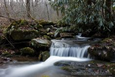 A tributary creek in Greenbrier, Great Smoky Mountains National Park