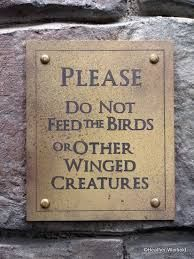"""Please do not feed the birds or other Winged Creatures"" Sign NEED"