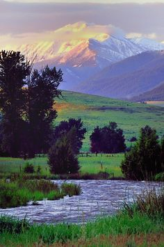 Mountain view, rolling hills, open meadow, some timber and a beautiful stream, all in one place!