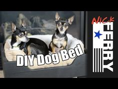DIY Dog Bed (ep29)