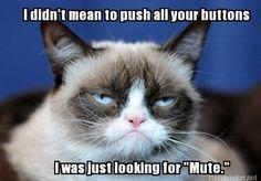 Funny Clean Memes 2015 : Hilarious thanksgiving memes complex