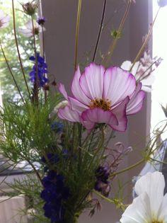 Flowers from Betonnen Boswachter picked by Stylingredients