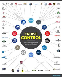 Car Brand Control