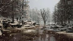 I Love Winter, Winter Snow, Meditation Music, Calm Meditation, Yoga Music, Forest River, Winter Scenes, Aesthetic Pictures, Law Of Attraction