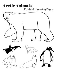 Arctic Animals Printable Coloring Pages  *This just makes me unreasonably angry...which of these things just doesn't belong? Here's a hint....the one that lives in the Antarctic.
