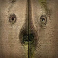 Everyday objects with faces (26 pictures) LOL!